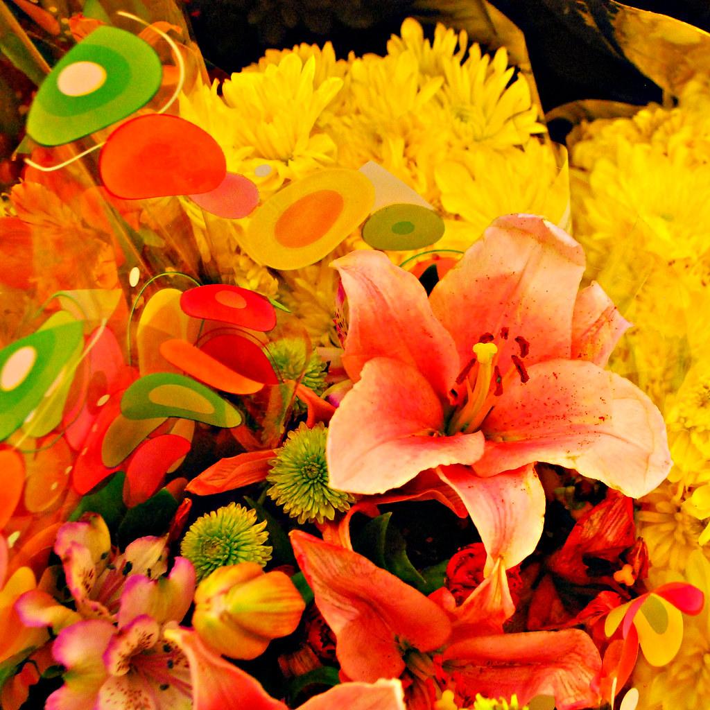 BULK FRESH CUT FLOWERS CUT FLOWERS APPROPRIATE FLOWERS FOR A FUNERAL
