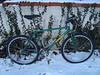 Dreesens Bicycles Kermit Love