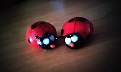 office bugs