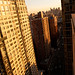 Random New York - 2011