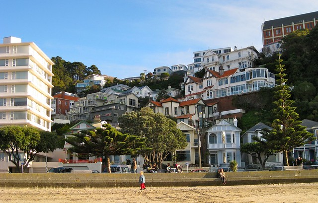 Houses at Oriental Bay