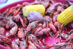 animal(0.0), crayfish(0.0), crab boil(1.0), seafood boil(1.0), crustacean(1.0), seafood(1.0), food(1.0),