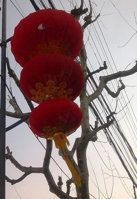 201101246582/翔殷路/Xiangying Rd.