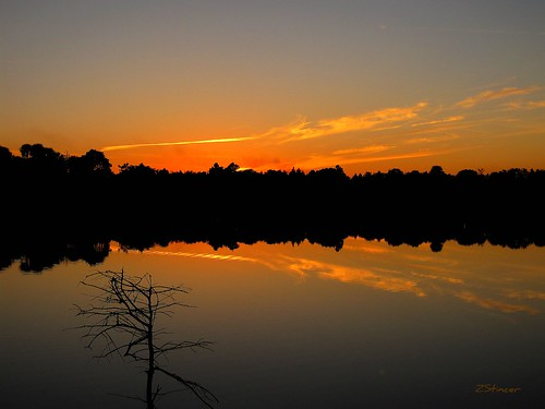 sky lake nature reflections landscape fire golden canonpowershot thompsonpark sunsetmiami zstincer silhouettestree