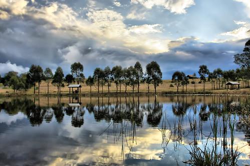 blue trees sun white lake storm reflection green water grass clouds canon tripod sydney australia mario nsw sunrays spacecadet bekes mariobekes