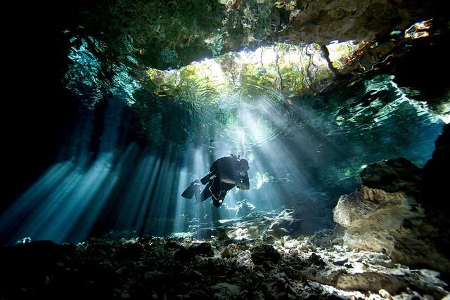Cenote - Quintana Roo, Mexico