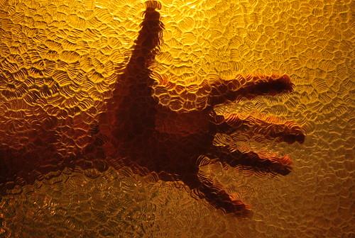 hand glass