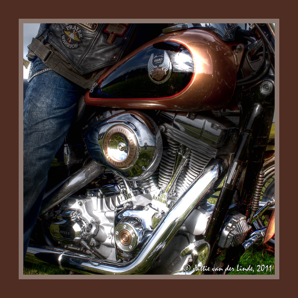 Harley Davidson Oil Pump Diagram   Harley Davidson Oil