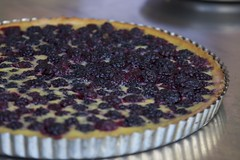 blackberry, berry, blackberry pie, baked goods, frutti di bosco, tart, fruit, food, dish, dessert, cherry pie,