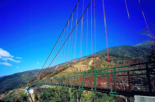 Y658東埔溫泉區東埔吊橋