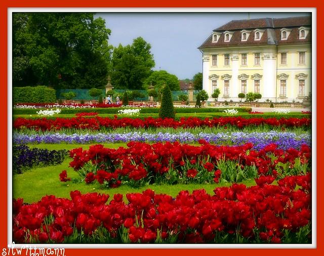 bl hendes barock barroco florido blossoming baroque at ludwigsburg palace gardens. Black Bedroom Furniture Sets. Home Design Ideas
