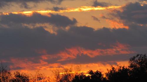 trees storm clouds landscape golden horizon sunsets peaceful heavens heavenly