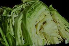 Green Cabbage 1