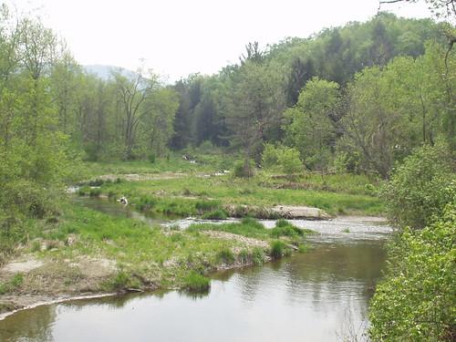Lewis Creek - Monkton