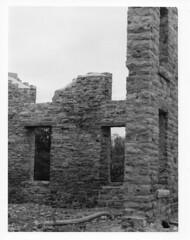 Elmwood Ruins