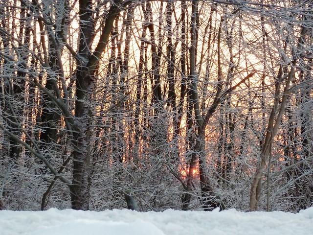 glittering sunset