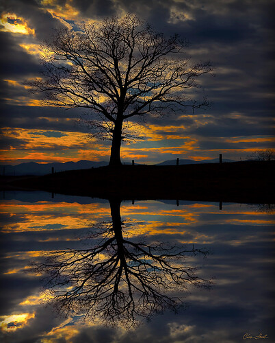 blue trees winter light sunset red sky orange lake mountains reflection tree nature water silhouette clouds canon landscape evening northcarolina oldtree blueridgemountains