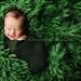 newborn wrap by Kelley Ryden