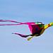 Kite Fest 2011-0086.jpg