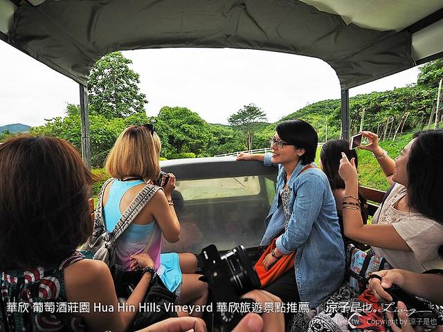 華欣 葡萄酒莊園 Hua Hin Hills Vineyard 華欣旅遊景點推薦 42