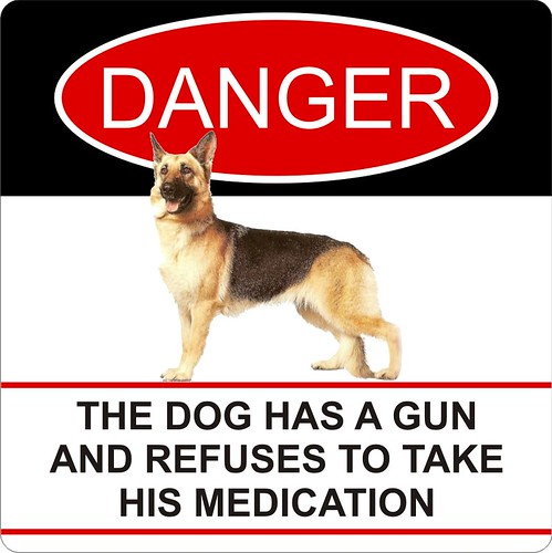 The dog has a gun