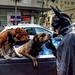 A Batman moment by Maureen Bond