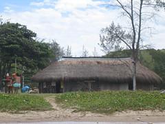 barn(1.0), thatching(1.0), farm(1.0), village(1.0), hut(1.0), shack(1.0), house(1.0), rural area(1.0),