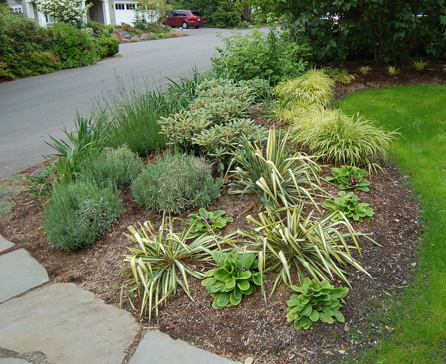 Low maintenance gardening flickr photo sharing for Low maintenance garden