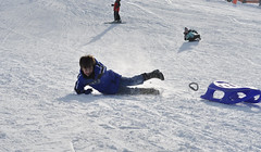 alpine skiing(0.0), snowboarding(0.0), snowboard(0.0), downhill(0.0), winter sport(1.0), winter(1.0), sports(1.0), snow(1.0), sports equipment(1.0), sledding(1.0), sled(1.0),