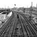 Track Yard