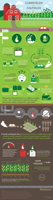 Ethanol Fuel Pros Cons Infographic Survivalrenewableenergycom