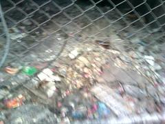 Rubbish or Pollution-Max
