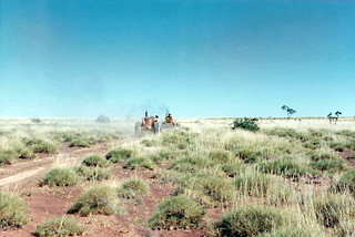 Roads in the Desert, Bohemia Downs Station - 1968