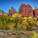 Autumn at Court of the Patriarchs - Zion NP