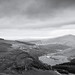 Wicklow Mountains B&W #_LAN5870