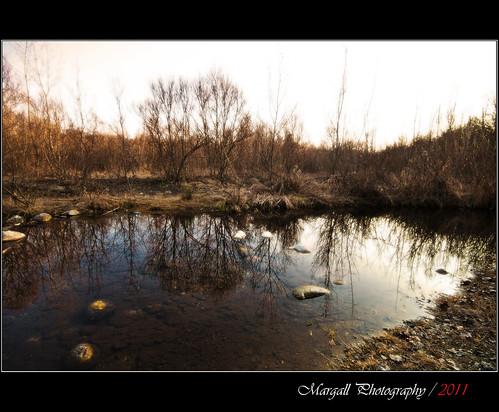 Reflections on the little river - non hdr - Parco fluviale di Cuneo -