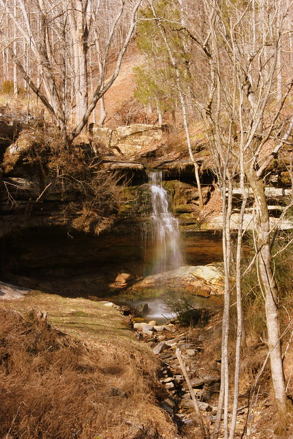 Hickman Springs Waterfall D - View from the road