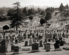St. Mary's Cemetery, Oakland