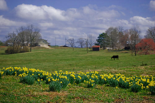 Randolph County, Alabama