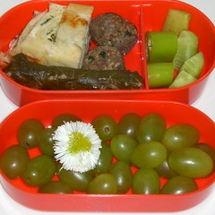 garnish(0.0), produce(0.0), meal(1.0), lunch(1.0), food(1.0), dish(1.0), cuisine(1.0), bento(1.0),