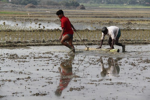 life red portrait blackandwhite white black green nature canon eos colorful faces blu sony surreal dhaka vaio rgb bangladesh dlsr 60d 595036 framebangladesh canalriverbongshi 906820012011