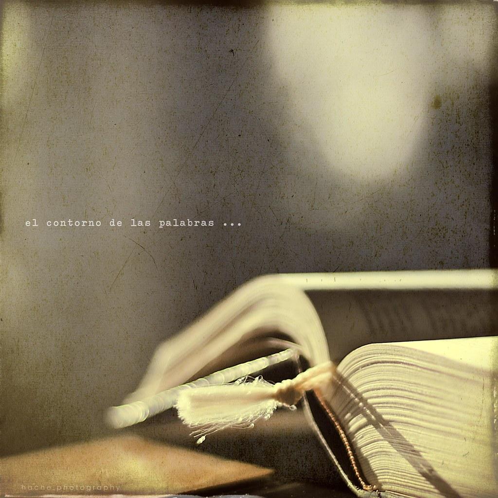 El contorno de las palabras ...