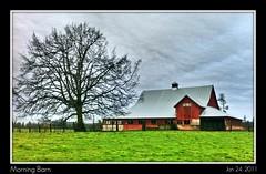 Morning Barn - 24/365