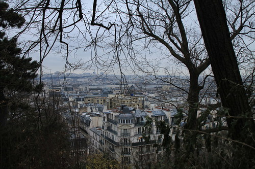 View from the Sacre Coure, Montmartre