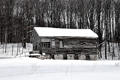 barn(1.0), winter(1.0), wood(1.0), white(1.0), tree(1.0), snow(1.0), shack(1.0), house(1.0), monochrome photography(1.0), log cabin(1.0), sugar house(1.0), monochrome(1.0), home(1.0), blizzard(1.0), black-and-white(1.0), rural area(1.0),