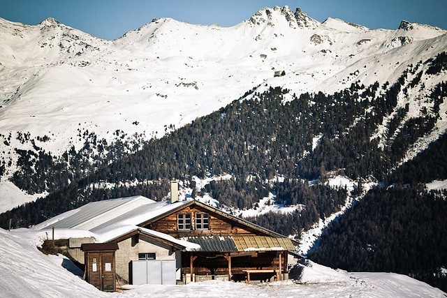 Swiss & Alps