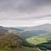 Wicklow Mountains #_LAN5870