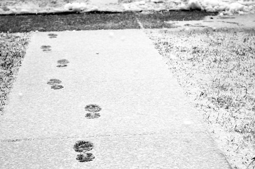 foot prints ~52/4 'soothing repetition'