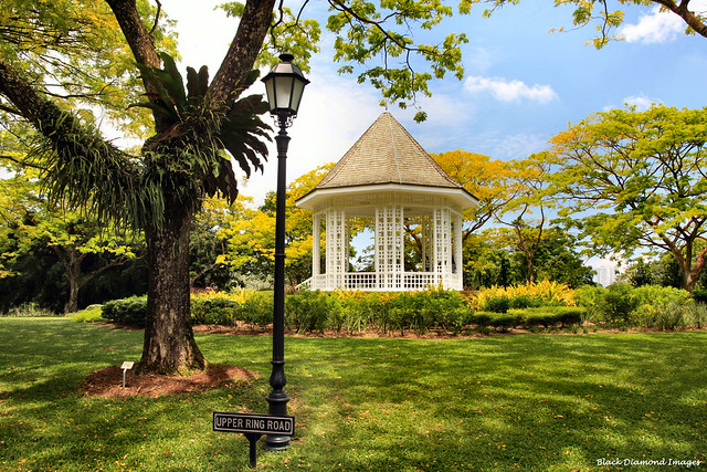 The Bandstand - Singapore Botanic Gardens - Upper Ring Road