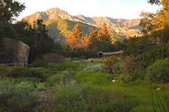 Santa Barbara Botanic Garden and Cathedral Peak